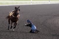 Jockey-fall